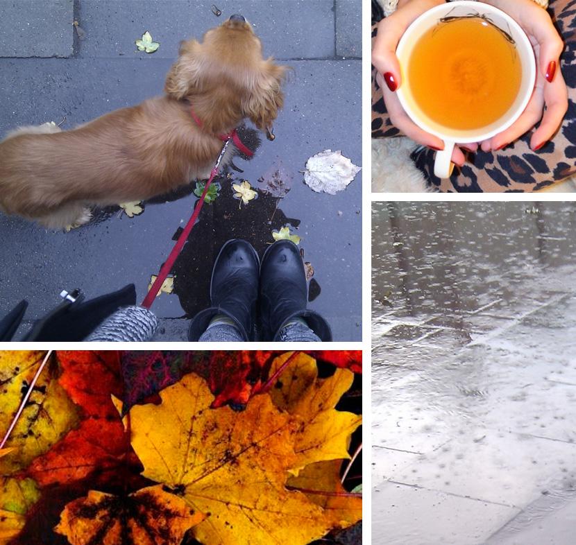 Blog_Belle-Melange_Loved_Gedanken_Herbstzeitlos