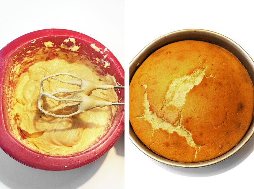 CakePops-Rezept-Anleitung-Backen-Kuchen-BelleMelange-02