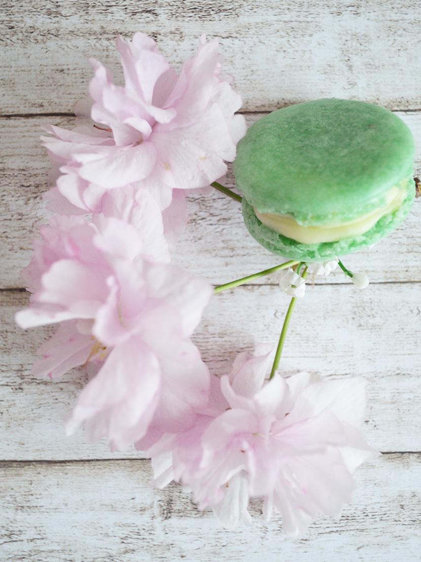 Weisse-Schokolade-Limetten-Macarons_Belle-Melange_Blog_Rezept_Backen_Delicious_10
