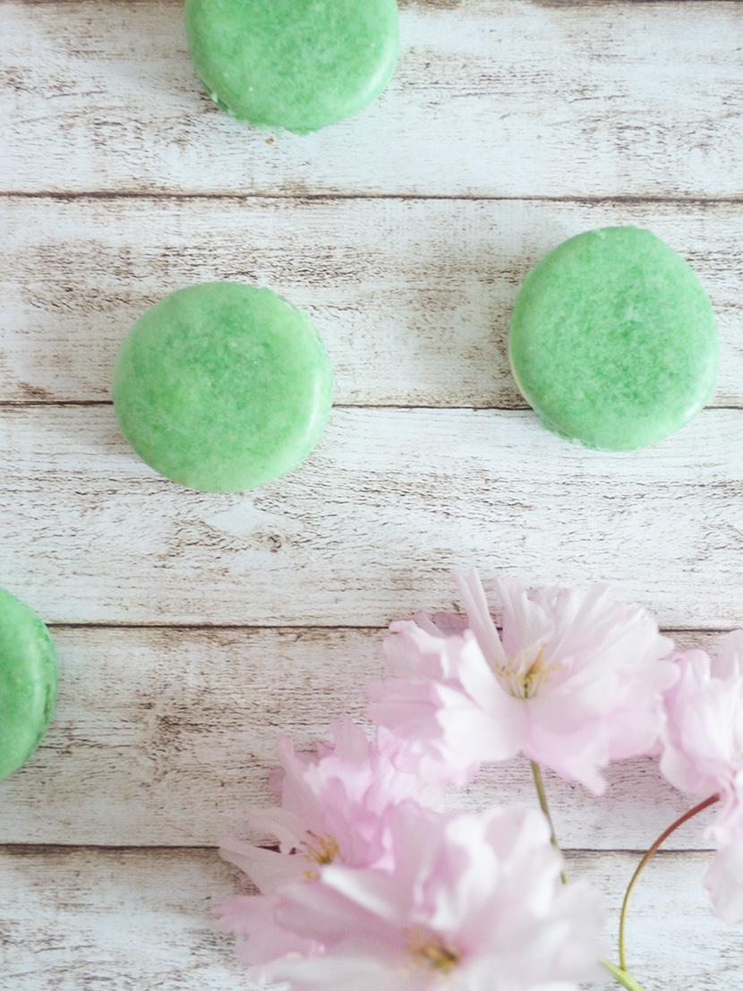 Weisse-Schokolade-Limetten-Macarons_Belle-Melange_Blog_Rezept_Backen_Delicious_9