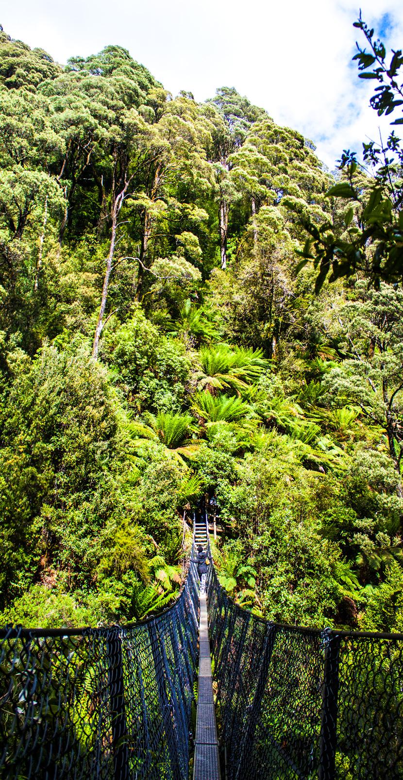Tasmania-Wonderland-Australia-Travel-BelleMelange-04