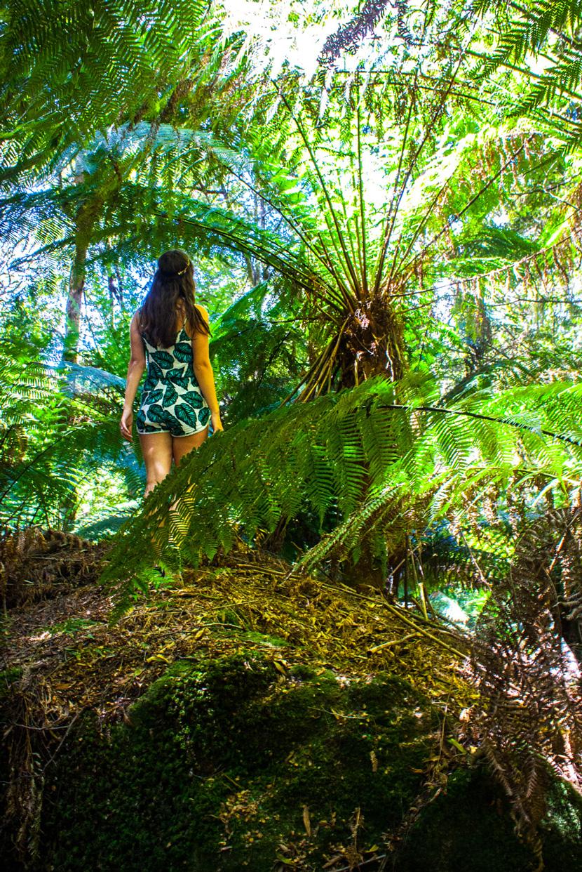 Tasmania-Wonderland-Australia-Travel-BelleMelange-06