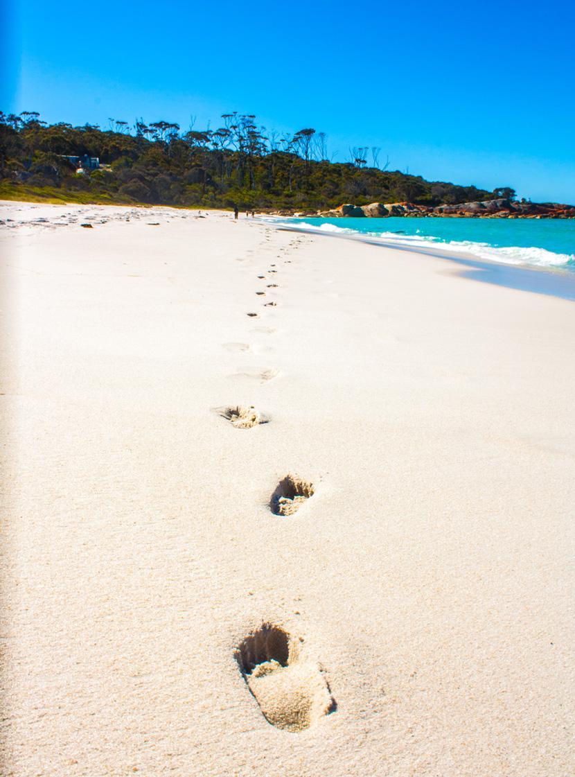 Tasmania-Wonderland-Australia-Travel-BelleMelange-09