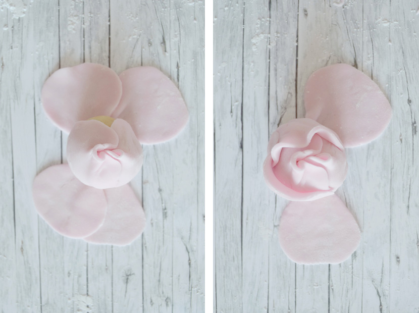 Cake-Pops-Roses-Blog-Belle-Melange-Delicious-Rezept-10