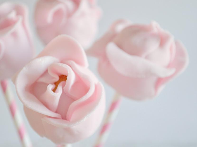 Cake-Pops-Roses-Blog-Belle-Melange-Delicious-Rezept-12