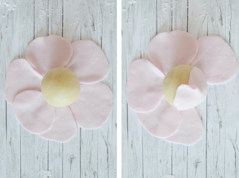 Cake-Pops-Roses-Blog-Belle-Melange-Delicious-Rezept-9