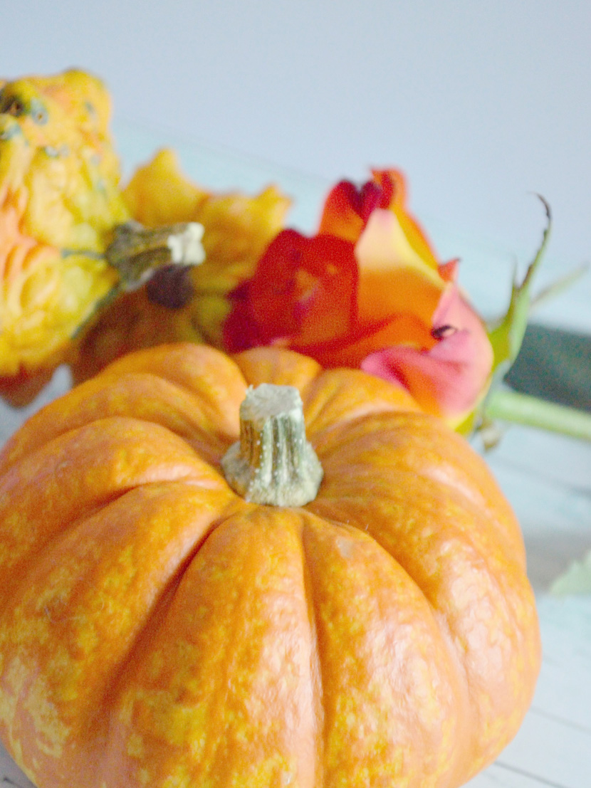 Pumpkin-Spice-Gugelhupfs_Blog_Belle-Melange_Delicious_Recipe-10