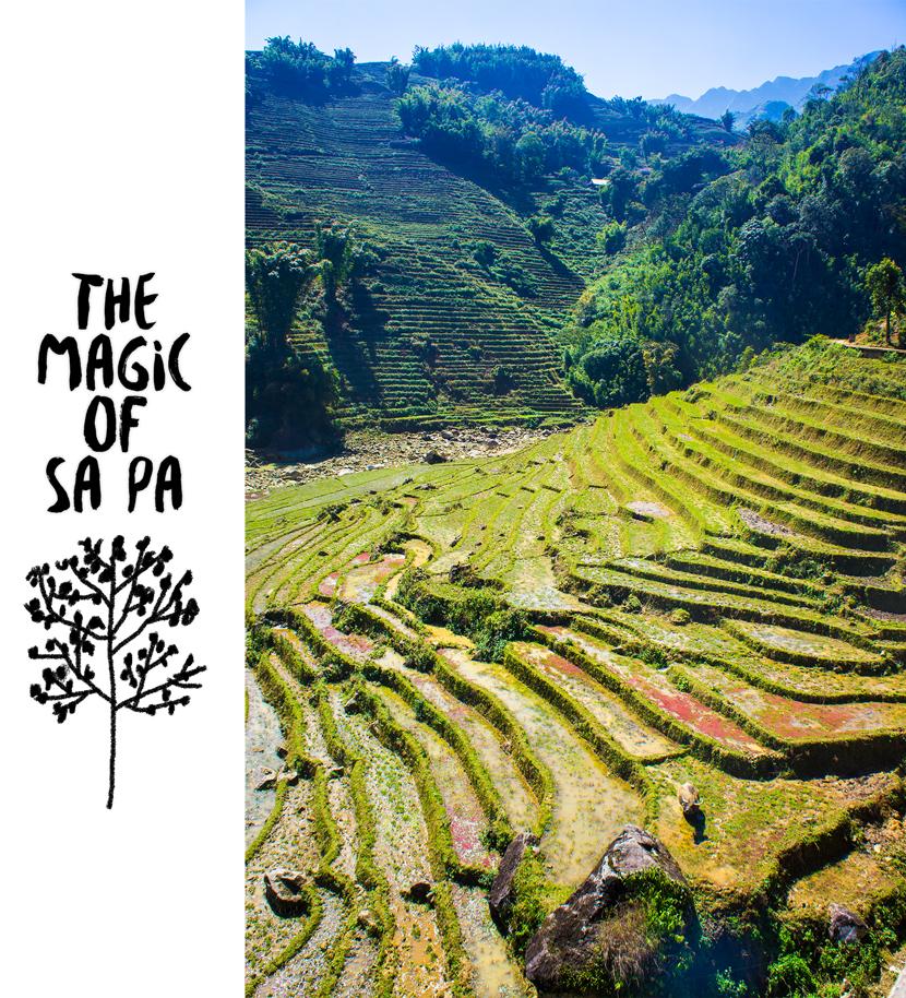 Trekking-Sapa-Vietnam-Rice-Terraces-BelleMelange-03