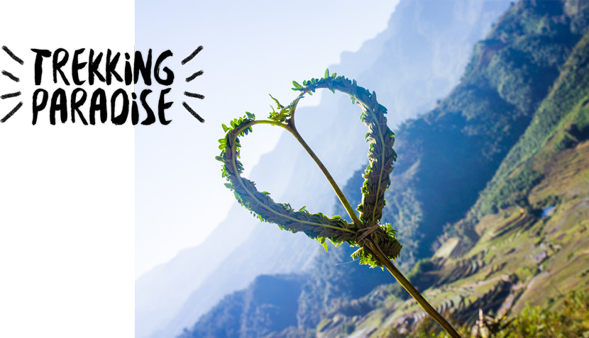 Trekking-Sapa-Vietnam-Rice-Terraces-BelleMelange-08