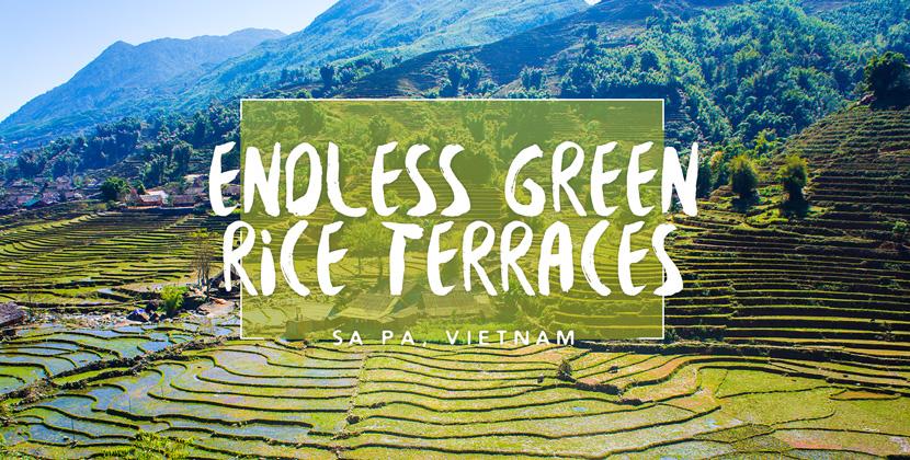 Trekking-Sapa-Vietnam-Rice-Terraces-BelleMelange-Titelbild
